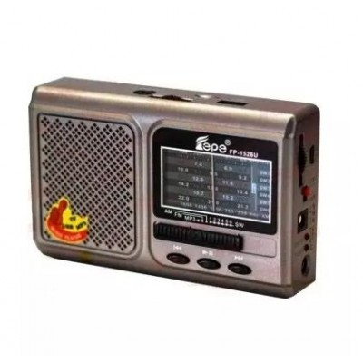 Rechargeable World Band Radio With Usb/Micro Sd/ Flashlight - Epe Fp-1